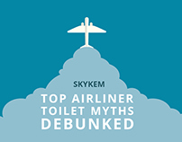 Infographic for Skykem