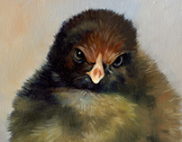 Chick Series
