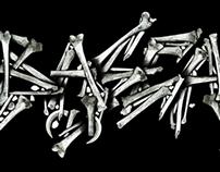 Logo Huesos BASCA