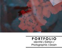 Portfolio _ BTS DG