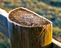 Fence post on ice