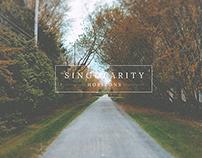 Singularity - Horizons