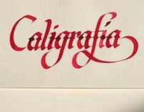 Práctica caligráfica vol. II