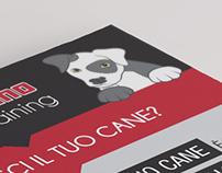 K-DOMINO - Dog Training - Flyer