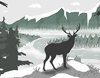 Experimental postcard animation