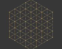 Hexagonal Print XIV