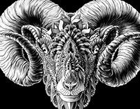 Ram Head (Tattoo Design)