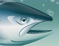 Pacific Salmon Foundation - 01
