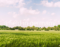 A field in Germany