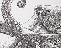 Octooooopus