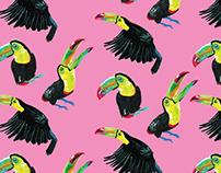 Felin & Flora - Rainforest Patterns