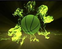 ASV - Championnes de France NF1 de basket