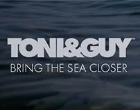 Tony&Guy Seashell