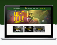 Collie Buddz | Responsive Web Design