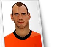 wesley sneijder infograph
