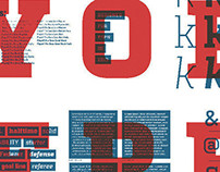 Playoff Pro Font Family
