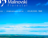 Email Marketing Expoforest 2014