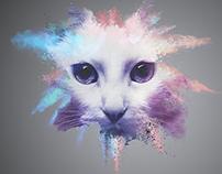 Explosive Color Cat