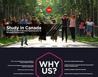 Website Template Design - Sun Education