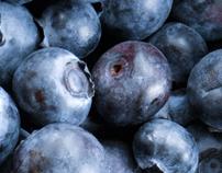 Web Design: Fig Newtons - The Fruitful Life
