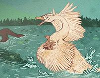 A Swan's Spunk