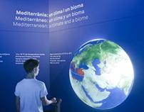 """Mediterranean"" at the Blue Museum"