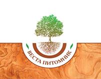 VESTA / Сorporate identity ВЕСТА / Фирменный стиль