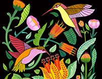 Patrón colibríes