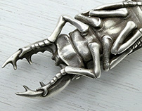 Large Silver Stag Beetle