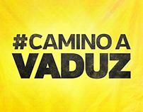 """Landing Page """"Camino a Vaduz"""""""
