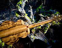 Breedlove Stringed Instruments