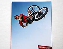 2011 Redline BMX Catalog