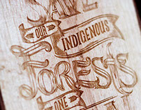 Castle Lager: Save Our Indigenous Forests