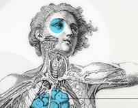La increible anatomía de un diseñador