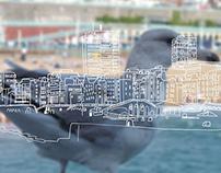 Brighton illustration