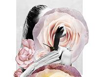 FLOWERS SERIE / COLOR