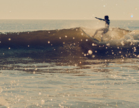 Plum Island Surf