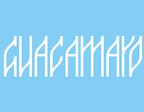 "Tipografía modular ""Guacamayo"""
