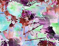 THORN FLOWERS