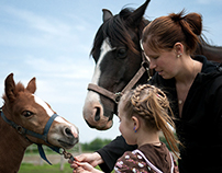 Bébé cheval et famille!