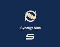 Road to Synergy : Nico