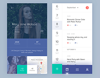 Calendar Interface Design