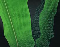 PlantEye 3D laser scanner