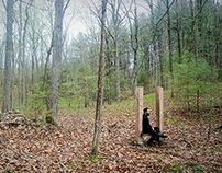 Woodland Misanthrope: Woodland Chair