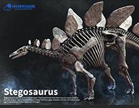 Stegosaurus skeleton.making