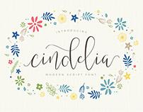 Cindelia Font