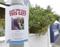 Missing Cat App