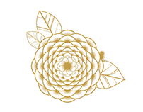 Pattern Design (B)