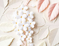 White Duranta