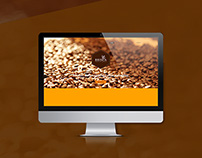 Brisca Web UI